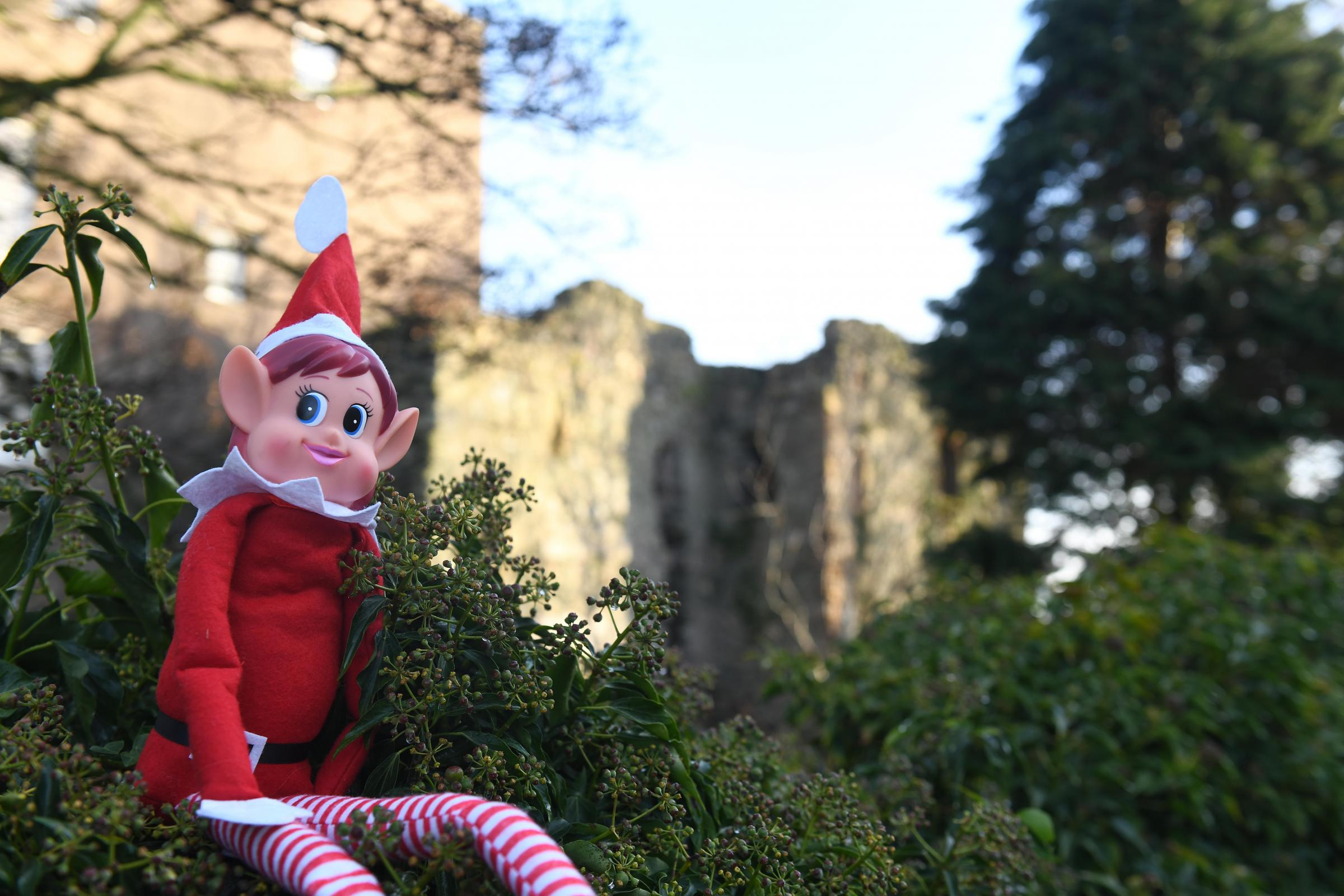 GUESS: Where is Elfis playing out today?